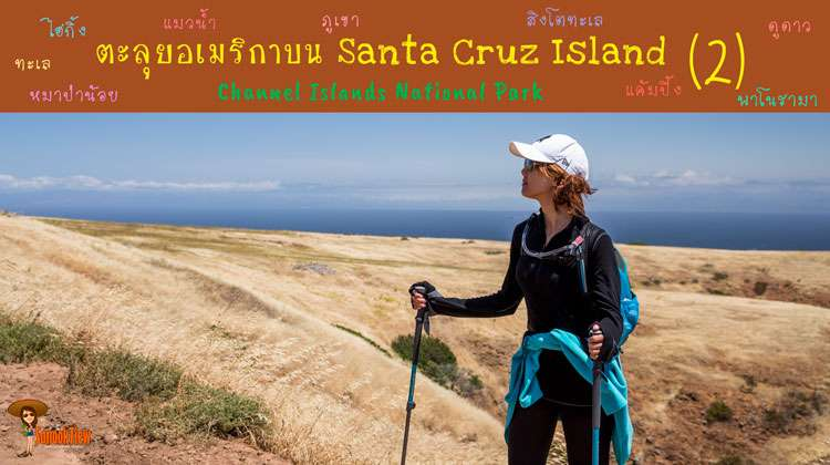 ตะลุยอเมริกา ไปลุยต่อที่ Santa Cruz Island ใน Channel Islands National Park (2)