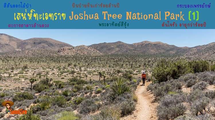 แค้มปิ้ง ไฮกิ้ง ปีนป่าย มนต์เสน่ห์ทะเลทราย Joshua Tree National Park แคลิฟอร์เนีย อเมริกา (1)