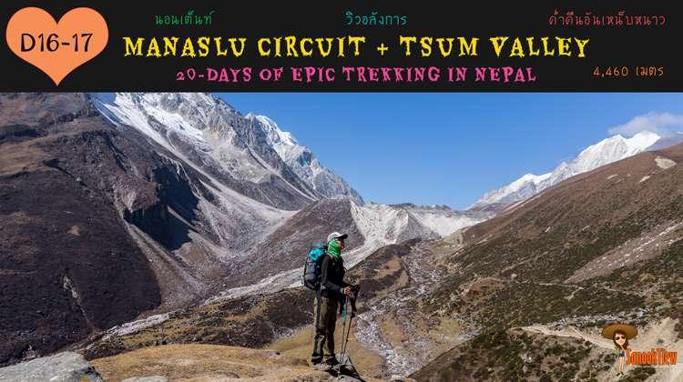 Dharmasala นอนเต็นท์ที่ 4,460 เมตร กับ Manaslu Circuit และ Tsum Valley (8)